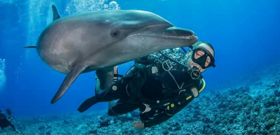 https://tahititourisme.com.br/wp-content/uploads/2017/08/Archimedeexpeditionsphotocouverturure_1140x550px.png