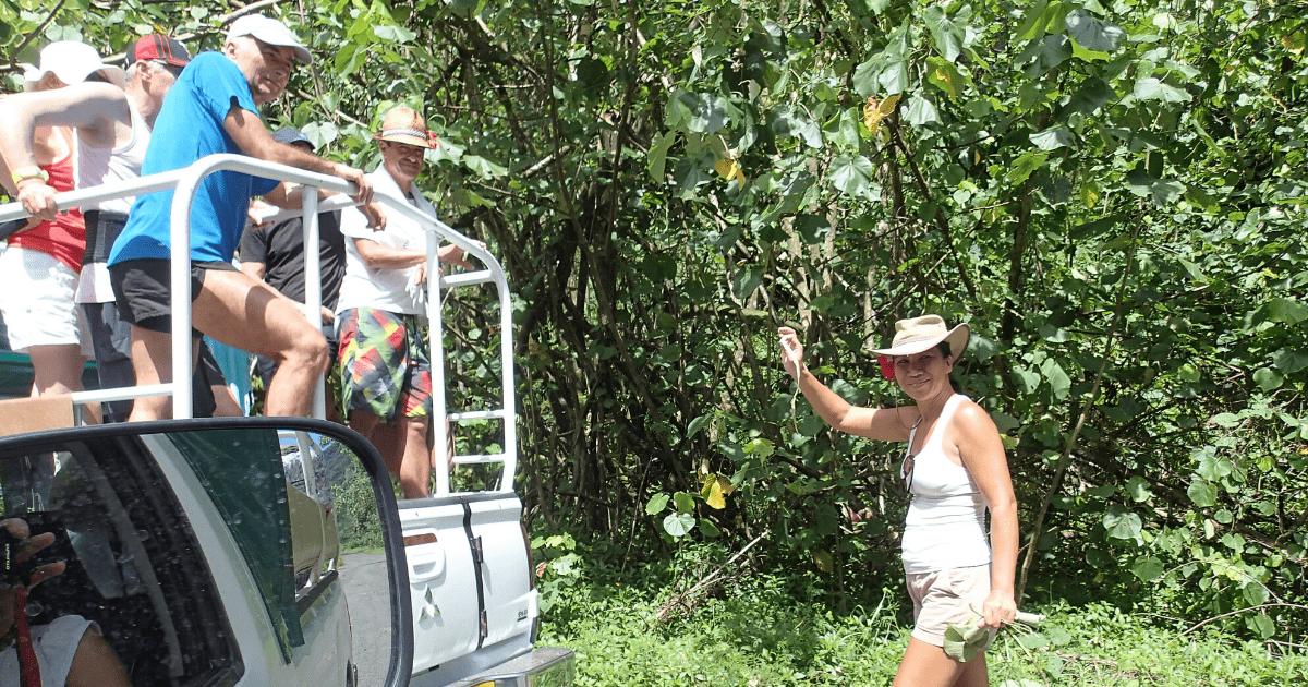 https://tahititourisme.com.br/wp-content/uploads/2017/08/Tahiti-Safari-Expeditions_1140x500-min.png