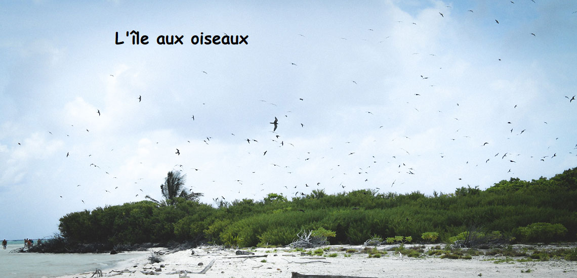 https://tahititourisme.com.br/wp-content/uploads/2017/08/Tahiti-Voile-et-Lagon-photo-de-couv-2.jpg