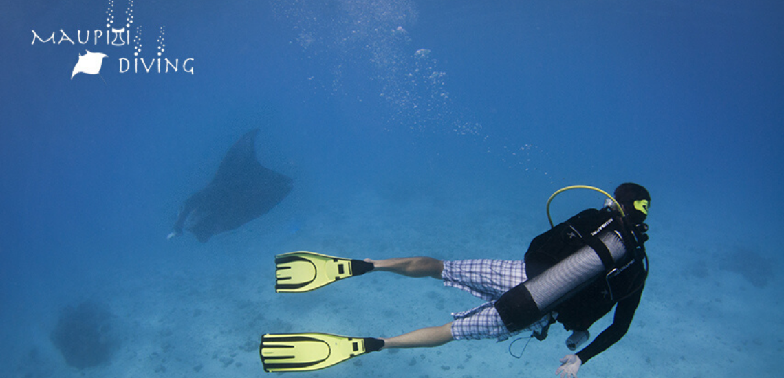 https://tahititourisme.com.br/wp-content/uploads/2017/08/maupitidiving_1140x5503.png