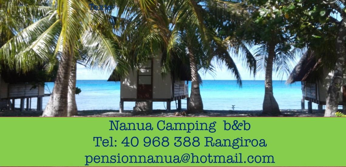 https://tahititourisme.com.br/wp-content/uploads/2017/08/nanuacamping_1140x550.png