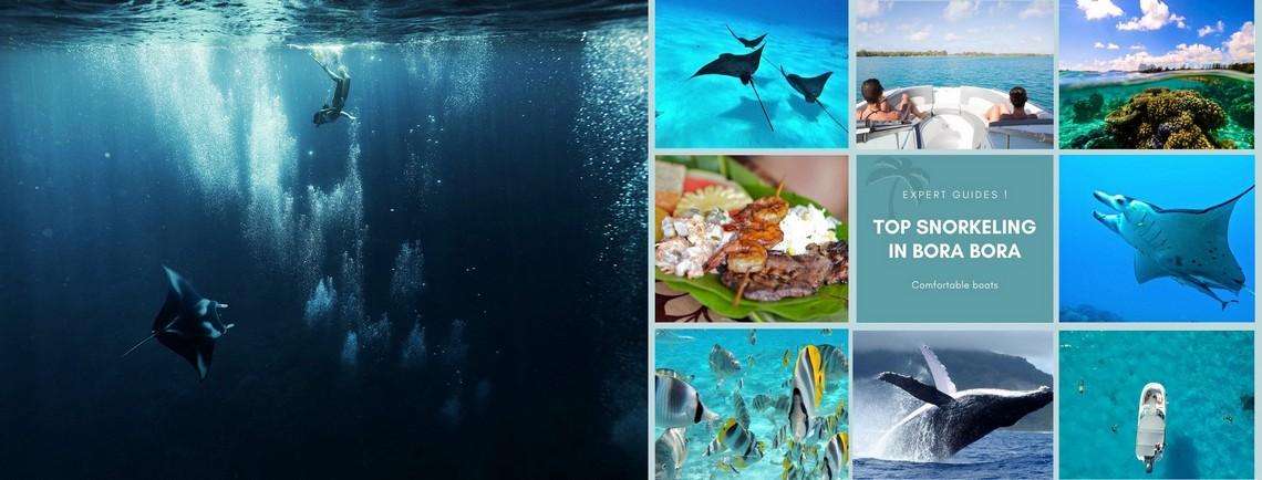 https://tahititourisme.com.br/wp-content/uploads/2017/08/reef-discovery-bora-bora.jpg