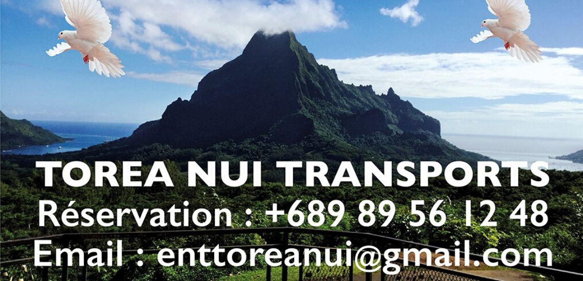 https://tahititourisme.com.br/wp-content/uploads/2017/08/torea-nui-transports_1140x550.png