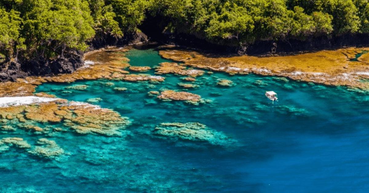 https://tahititourisme.com.br/wp-content/uploads/2017/09/TahitiItiToursSurf_1140x550-min.png