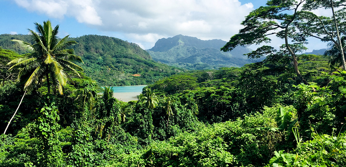 https://tahititourisme.com.br/wp-content/uploads/2018/05/ACTIVITES-TERRESTRES-Green-Tours-Huahine-2.jpg