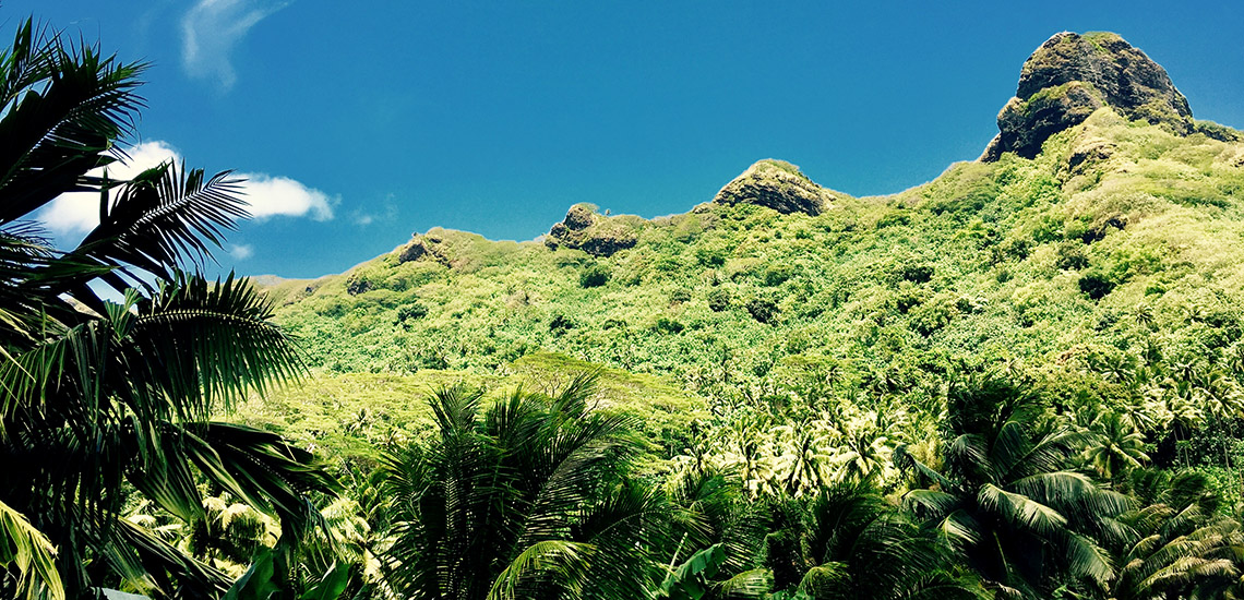 https://tahititourisme.com.br/wp-content/uploads/2018/05/ACTIVITES-TERRESTRES-Green-Tours-Huahine-3.jpg