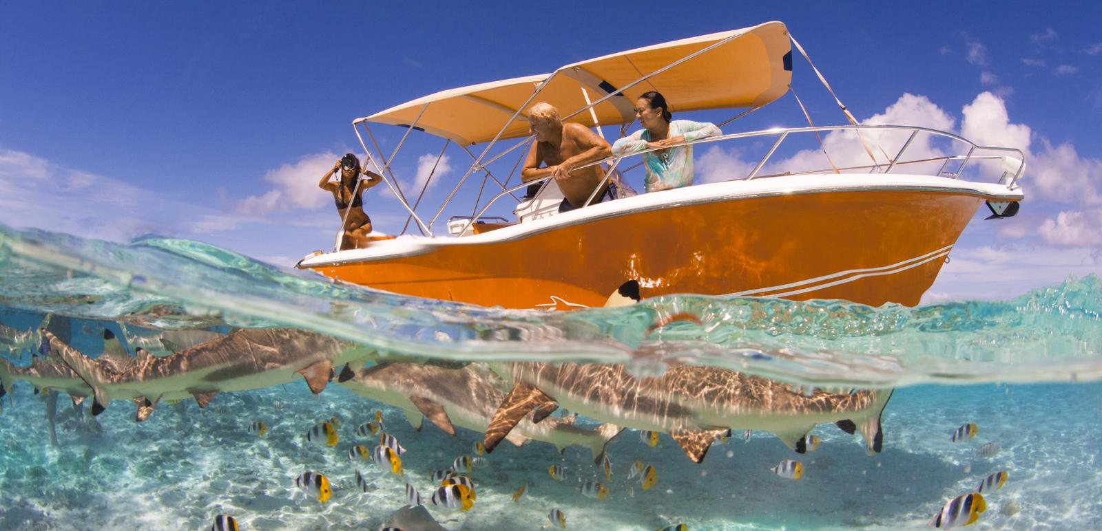 https://tahititourisme.com.br/wp-content/uploads/2019/01/BOB-location-bateaux_couv1.jpg