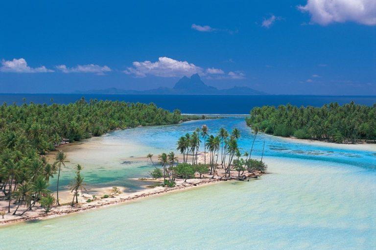 Tahiti Manuia