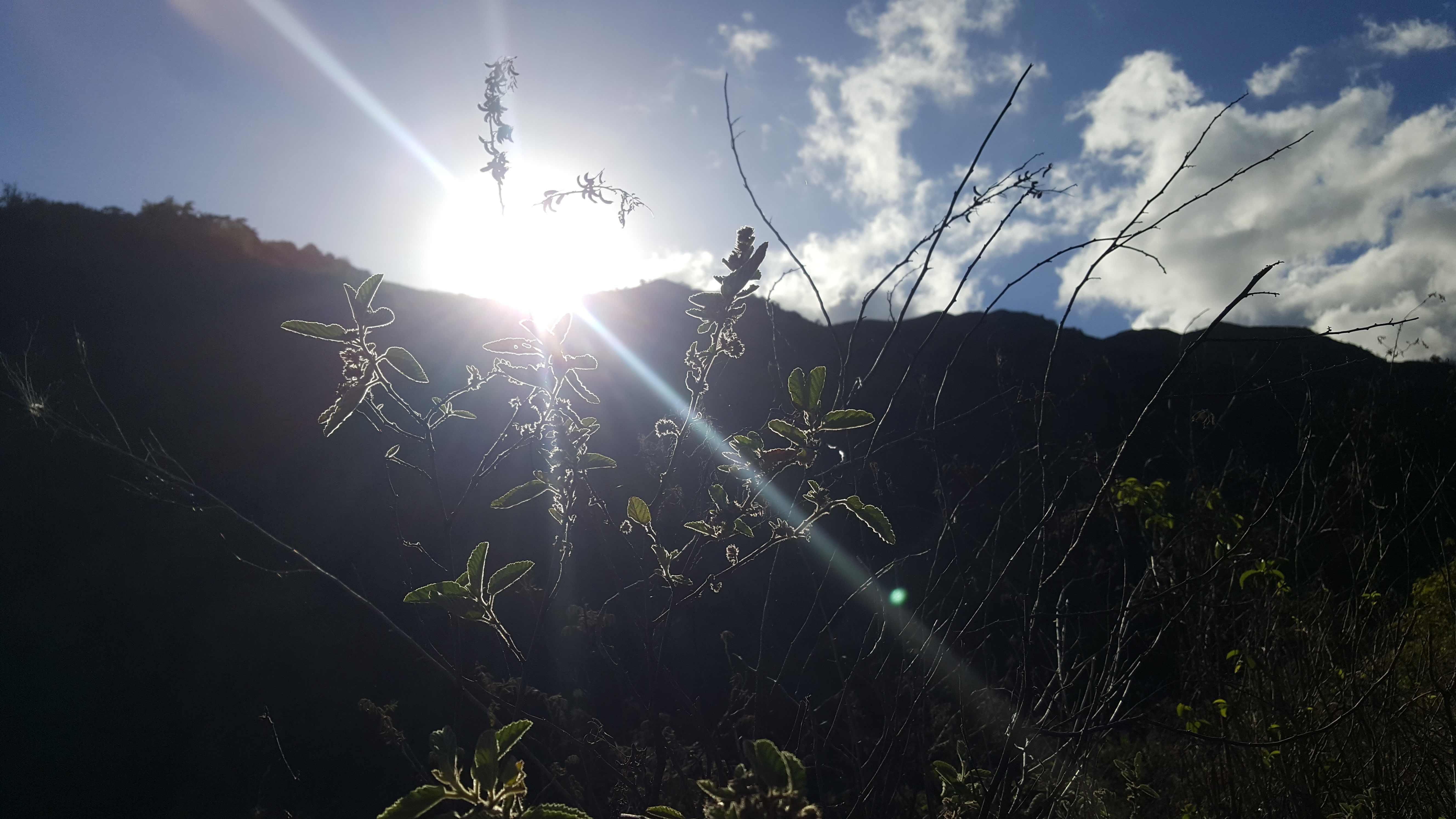 https://tahititourisme.com.br/wp-content/uploads/2020/09/20180519_074342.jpg