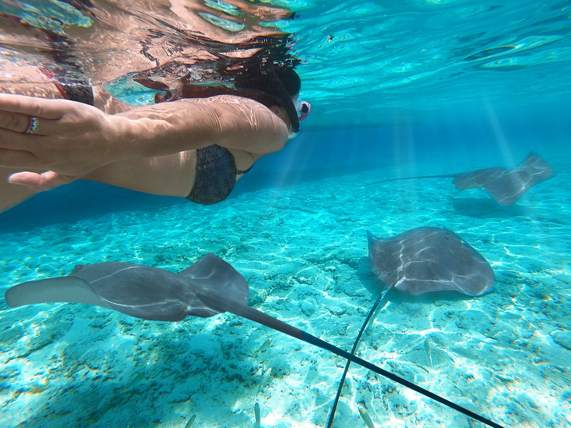 https://tahititourisme.com.br/wp-content/uploads/2020/11/Lagoon-Srvice-Bora-Bora-2.jpg